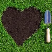 Lawn Repair Isleworth